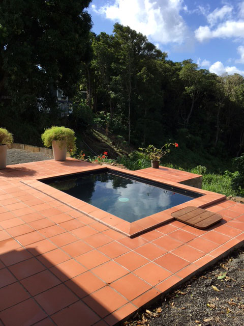 Location de gite avec piscine en forêt en Guadeloupe
